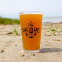 Photo of a glass of IPA beer.
