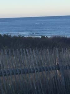Looking through wood slat fence out to the ocean.