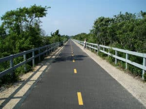 paved bike path with dotted center line opening to marshy area