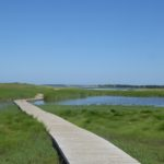 The boardwalk on one of the trails, passing over a salt marsh.