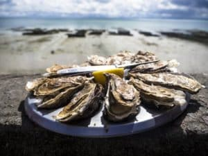 oysters on the half shell on a plate at op the sand with the ocean in the background