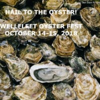 A close up picture of oysters in the shell with the title: Hail the Oyster! Wellfleet Oyster Fest, October 14-15, 2018.
