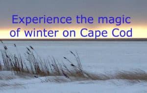 Photo of a snowy beach on Cape Cod